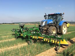 Varidome band sprayer for salad onions at LAMMA - Varidome S3 in spring onions
