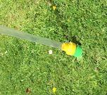Weedstick+ photo 1307