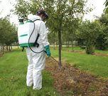 KS16 in orchards