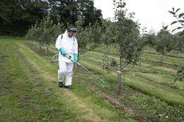 Herbi 4 - Herbi 4 orchards
