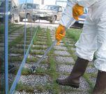 Microwipe in use on weeds between slabs