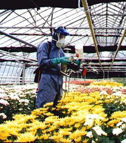 CDA Spraying In Glass Houses - Turbair Electrafan