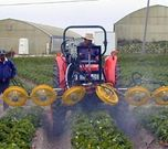 Turbofan spraying strawberries