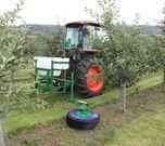 Undavina in orchards