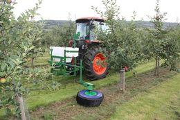Undavina  - Undavina in orchards