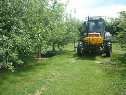 Micron Group to showcase sprayers for fruit and vine growers -