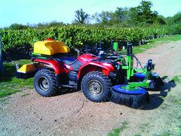 Ways with weeds in vineyards -